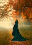 Mystisk främling som flickan vände omkring på en bana i skogen, i en grön smaragdklänning med en huv och vitt arkivfoton
