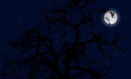 Mystisk moon Arkivfoton