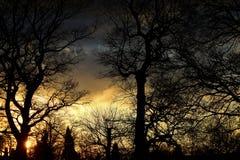 mystisk solnedgång Arkivfoton