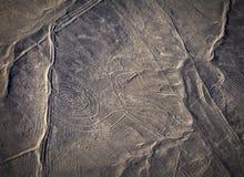Mystiska diagram Nazca öken från flygplanet Arkivfoton