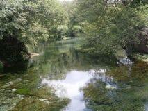 Mystiska Green River royaltyfri foto