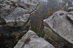 Mystiska Leke vaggar och den dimmiga skogen i avståndet arkivbilder