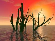 Mystiska stammar av träd Arkivfoto