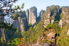 Mystiskt berg Zhangjiajie. Royaltyfria Foton