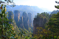 Mystiskt berg Zhangjiajie. Arkivbilder