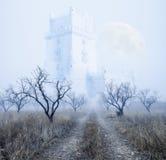 Mystiskt dimmigt landskap stock illustrationer