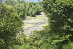 Mystiskt fördärvar av Guayabo de Turrialba, Costa Rica royaltyfria bilder