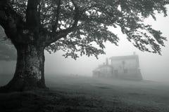 Mystiskt hus i dimmig skog arkivfoto