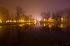 Mystiskt landskap med träd nära dammet i dimmig höst även Royaltyfria Bilder