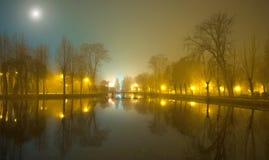Mystiskt landskap med träd nära dammet i dimmig höst även Arkivbild