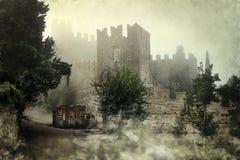 mystiskt slott Arkivbilder