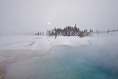mystsnowvinter yellowstone Royaltyfri Foto