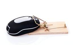 mysz łapać w pułapkę Obrazy Royalty Free