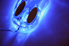 mysz zdjęcie stock