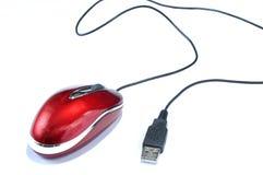 mysz Zdjęcia Royalty Free