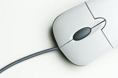 mysz zdjęcie royalty free
