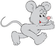 mysz bieg Obrazy Stock