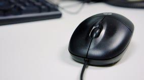 Mysz komputer odizolowywający Obrazy Stock