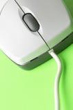 mysz makro zdjęcia stock