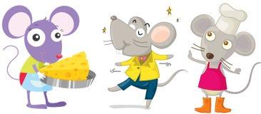 myszy Zdjęcia Royalty Free