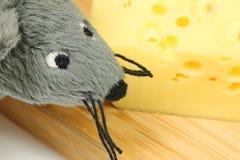 myszy chese obwąchanie Zdjęcia Stock