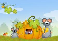 Myszy w bani Zdjęcie Royalty Free