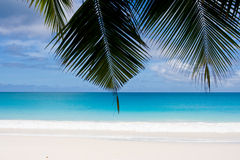Myth?. Dream beach with white sands Royalty Free Stock Image