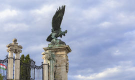 The mythical bird Turul holding claws paws powerful the legendar Royalty Free Stock Image
