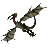 Mythical Fantasy Dragon with Forktail. Giant fantasy dragon with great wings. With Clipping Path Stock Photos