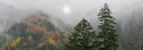 Mythical Smoky Mountains Stock Images