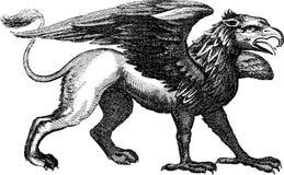 Mythisches griffon Tier der Weinlese-Illustration Stockfoto