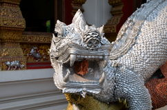 Mythological lizard guarding the entrance to a Buddhist temple Stock Image