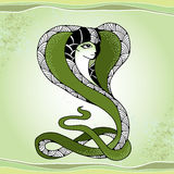 Mythological Snake with head of beautiful woman. The series of mythological creatures Royalty Free Stock Photography