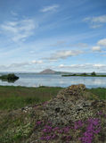 Myvatn in June Stock Photo