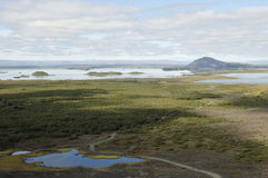 Myvatn lake in Iceland. Royalty Free Stock Photos