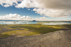 Myvatn lake. Iceland. Royalty Free Stock Images
