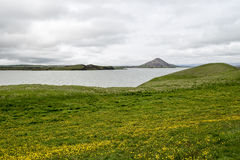 Myvatn Lake Iceland Royalty Free Stock Photos