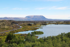 Myvatn lake in Iceland. Stock Image