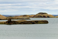 Myvatn lake, Iceland Stock Images