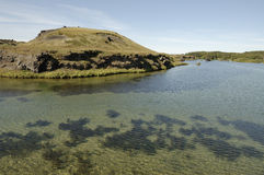 Myvatn lake landscape, Iceland. Royalty Free Stock Photo