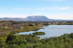 Myvatn sjö i Island. Fotografering för Bildbyråer