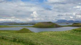 Myvatn sjö med gröna pseudocraters och öar på Skutustadagigar, Diamond Circle, i nordliga Island, Europa fotografering för bildbyråer