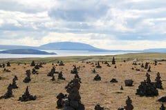 Myvatn sjölandskap, Island. Royaltyfri Foto