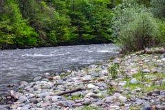 Mzymta-Fluss, Adler, Sochi, Russland Lizenzfreie Stockfotografie