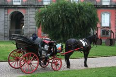 NÁPOLES, ITALIA, MARZO DE 2014 - cochecillo traído por caballo tradicional en el Reggia di Capodimonte Park foto de archivo