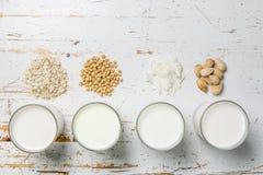 Não conceito do leite da leiteria fotos de stock royalty free