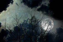 Nächtlicher Himmel Lizenzfreie Stockbilder