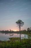 Nächtlicher Himmel im Sumpf Stockbilder