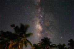 Nächtlicher Himmel mit der Milchstraße hinter Palmen auf einer Tropeninsel in den Malediven lizenzfreie stockfotografie