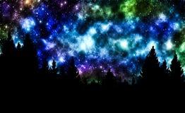 Nächtlicher Himmel mit Sternen und Bäumen Lizenzfreies Stockfoto